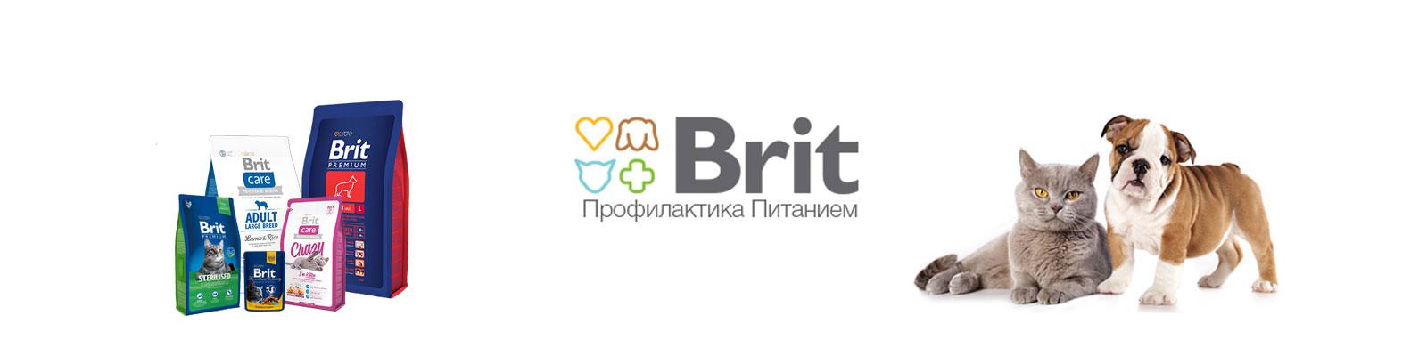 25f500623e3 Интернет-зоомагазин в Иркутске ♢ Интернет-магазин для животных Иркутск